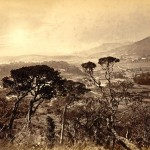 hills-in-ceylon-nuwara-eliya