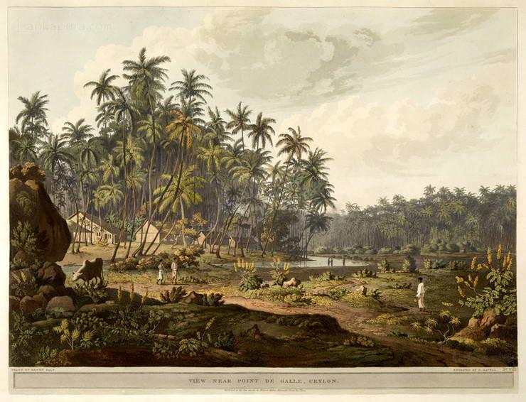 View near point the Galle - Ceylon